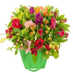 Moederdag alstroemeria in gift tas bestellen of bezorgen