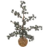 Kunstkerstboom met sneeuw bestellen of bezorgen