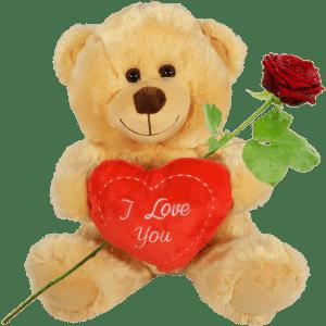 Bruine knuffelbeer met hart bestellen bestellen of bezorgen