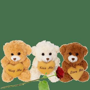 Trio knuffelberen set bestellen bestellen of bezorgen
