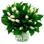 Boeket witte tulpen bestellen of bezorgen online