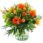 Oranje voorjaarsbloemen bestellen of bezorgen online