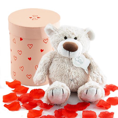 Valentijnsdag cadeau beer Baggio bestellen of bezorgen online