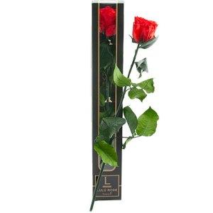 lulu roos in luxe verpakking bestellen of bezorgen online