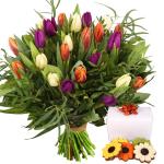 Boeket tulpen en bloemetje chocolade bestellen of bezorgen