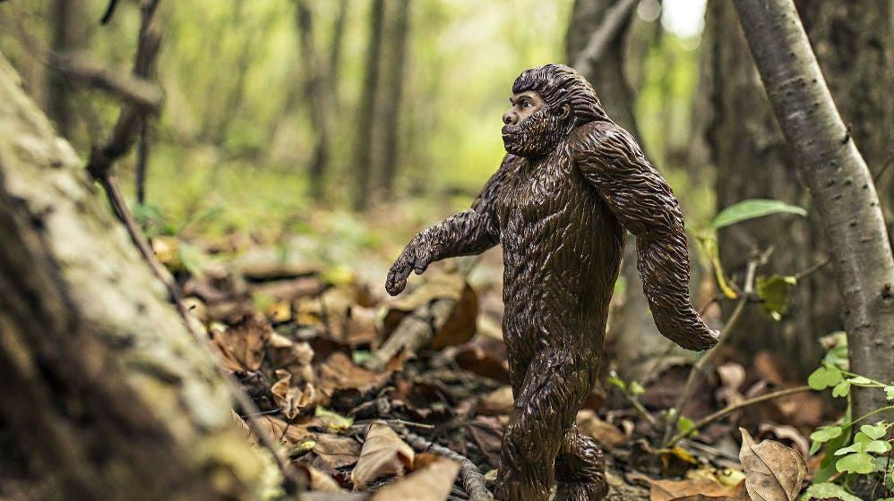 30b55c48453 Do You Believe in Sasquatch? If So, It's Time to Gear up