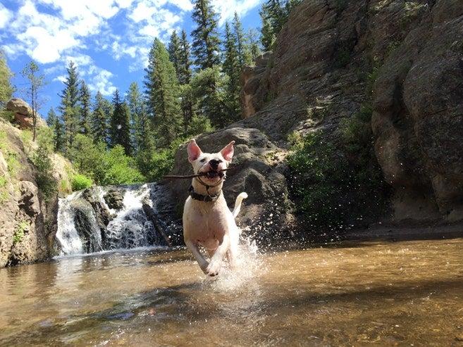 Jemez Falls campgrounds