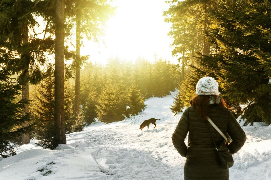 You don't have to partake in forest bathing solo! Bring a friend, even if that friend is furry.
