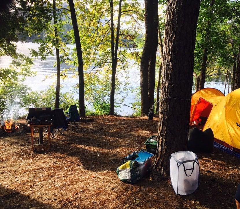 Go Van Camping In Georgia In Handpainted Campervans This