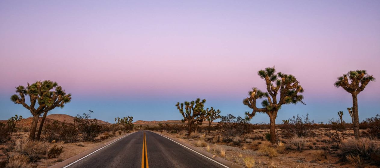 Hit Every National Park in Cali on This Epic California Road