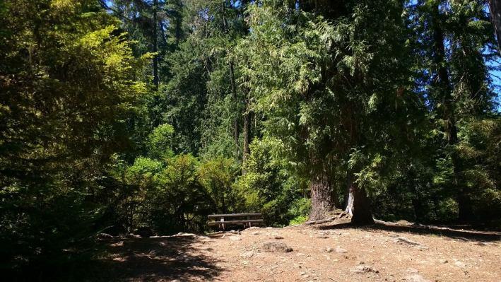 shellrock creek campground near portland