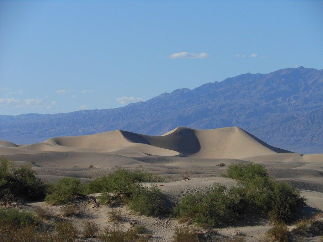 a sand dune in the california desert