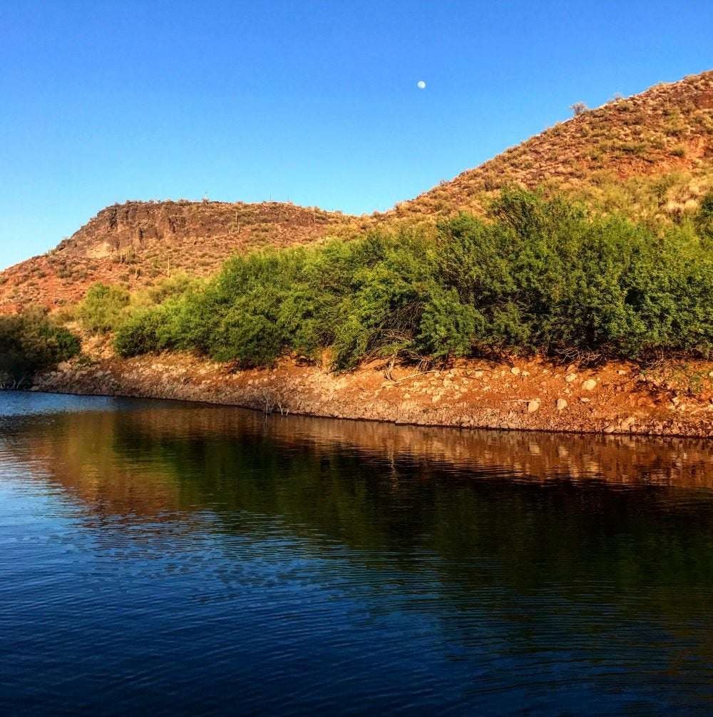 Lake in Arizona with moon in broad daylight and bushes along the water's edge.