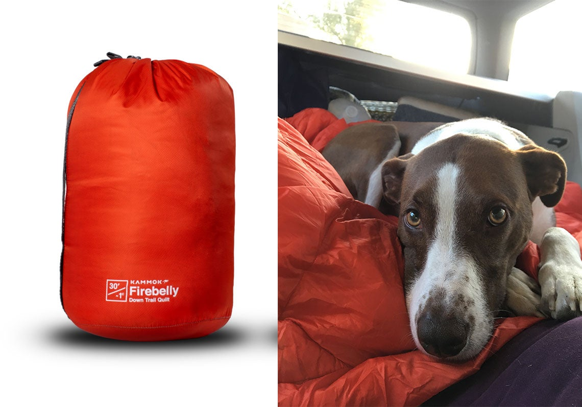 jackson the dog poses with firebelly blanket
