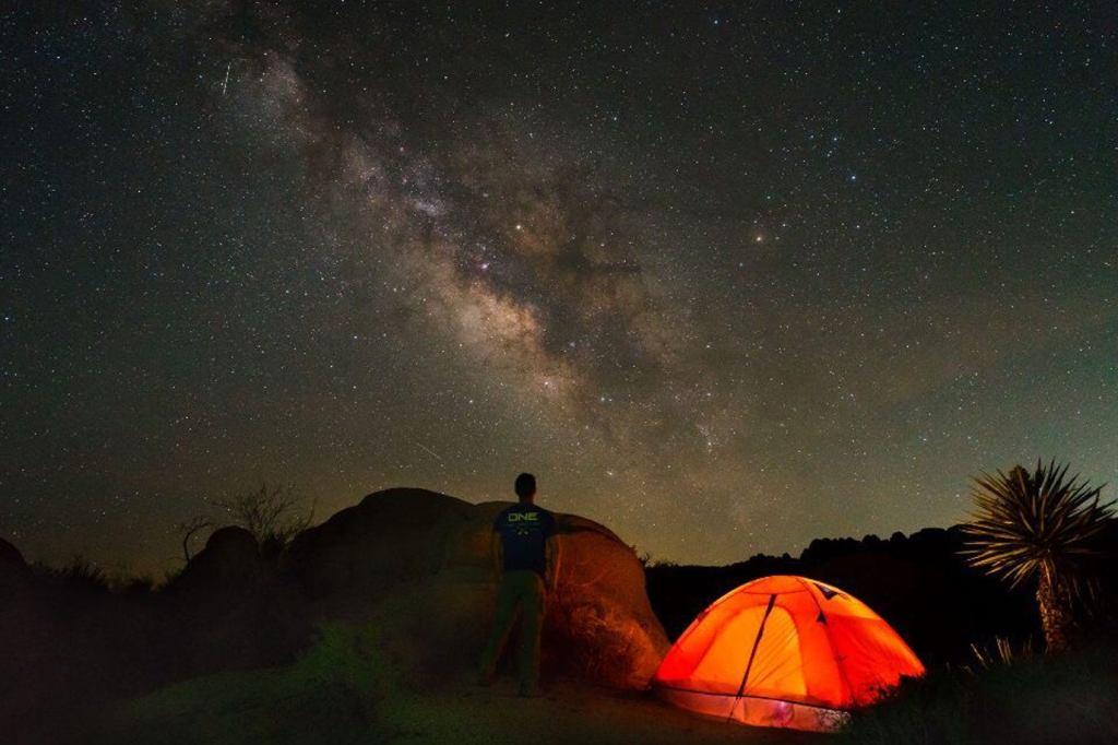 Joshua Tree Back Country Camping