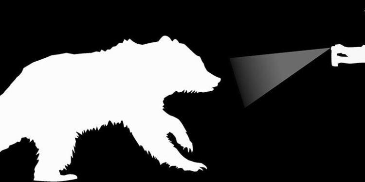 a man sprayed a bear with bear spray