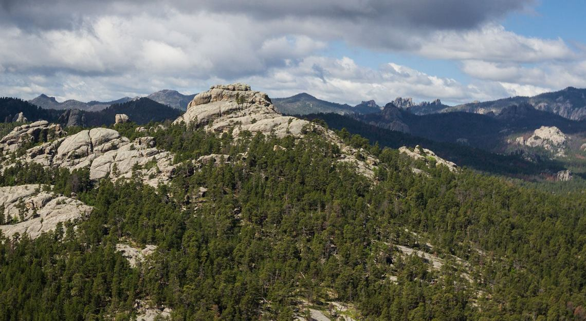 a rocky hill covered in trees in The Blacks Hills National Forest near Custer, South Dakota