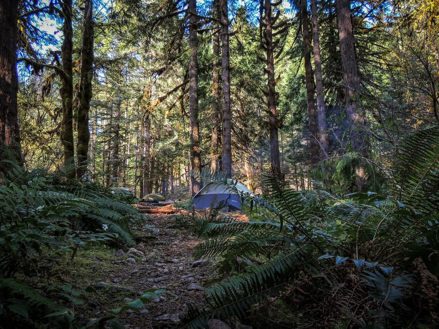 14+ Spots for Free Camping in Oregon and How to Find More