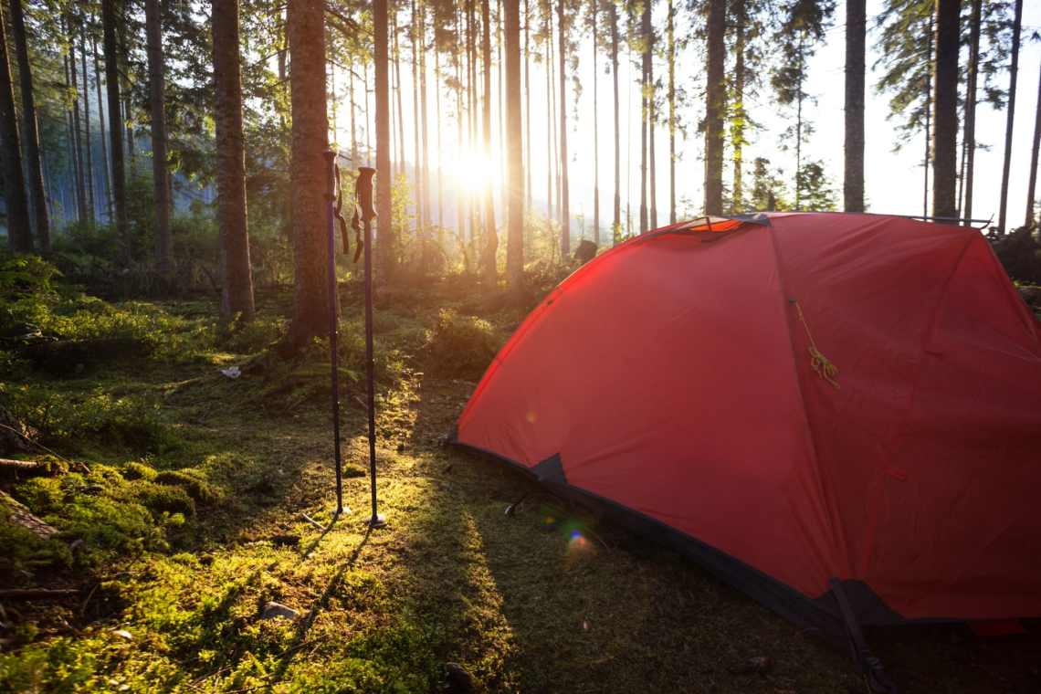 A red tent set up on mossy forest ground beside a pair of hiking poles with the sunlight shining through the trees.