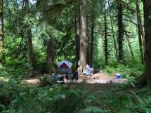 spots free camping in oregon