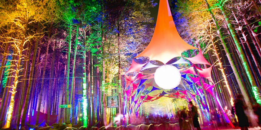 Forest with colorful lights on trees and multi-colored tent installation