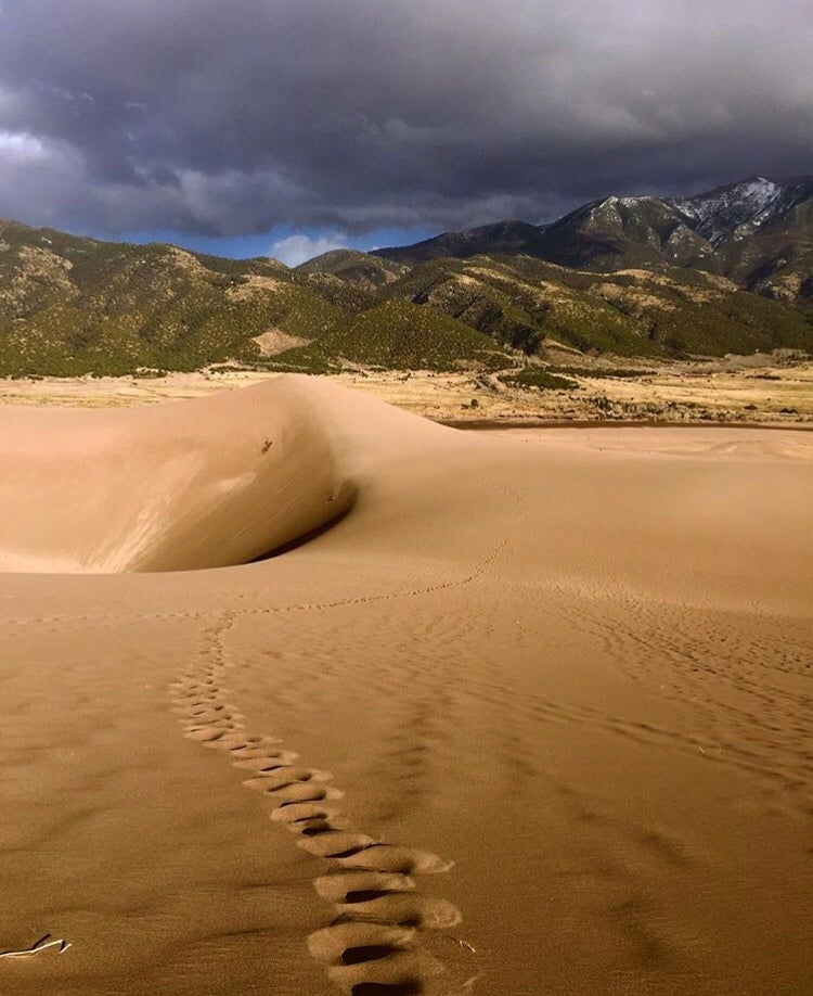 dark stormy clouds over tree covered mountains and sand dunes