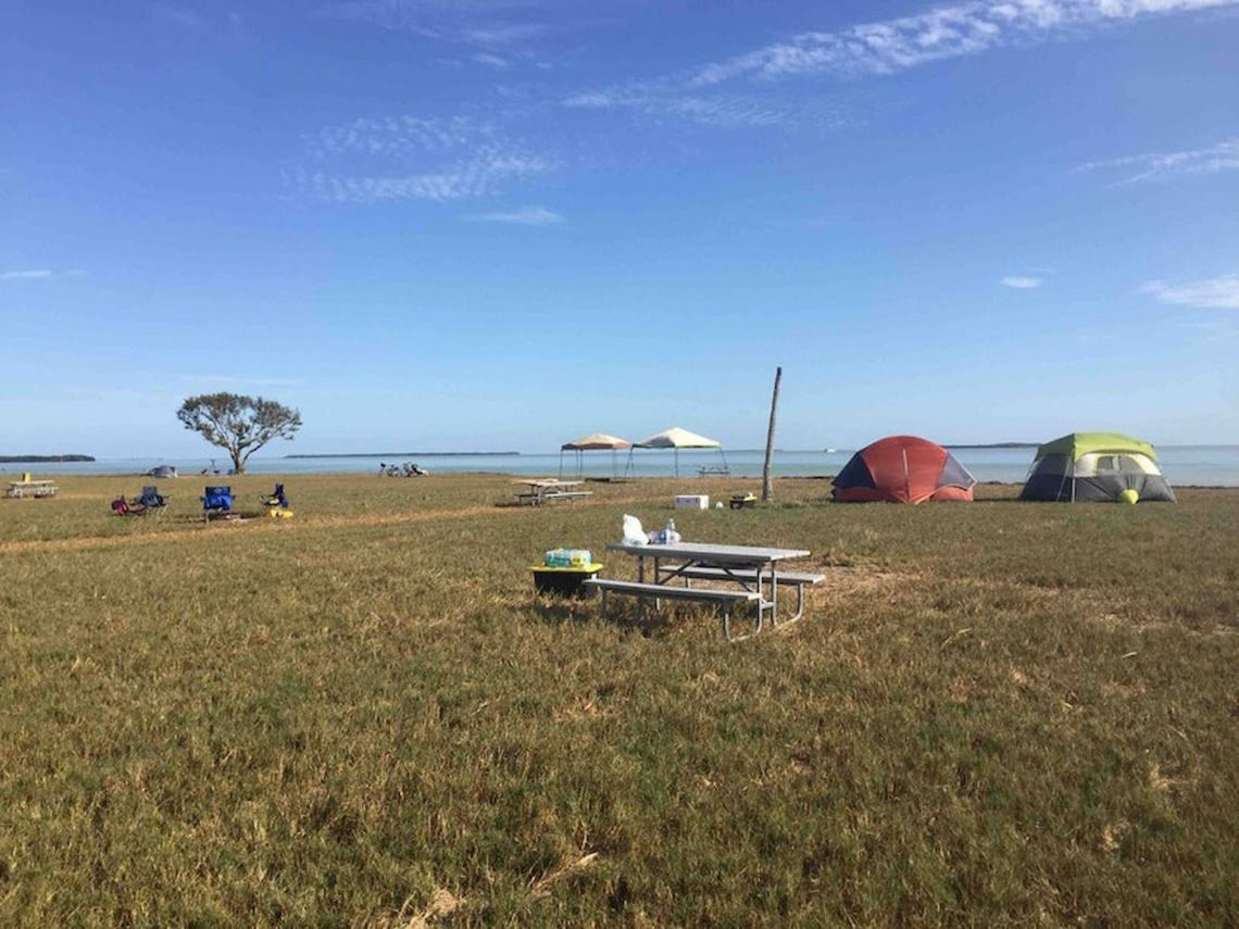 Field beside lagoon in the Florida everglades with dispersed camping tents and a picnic table.