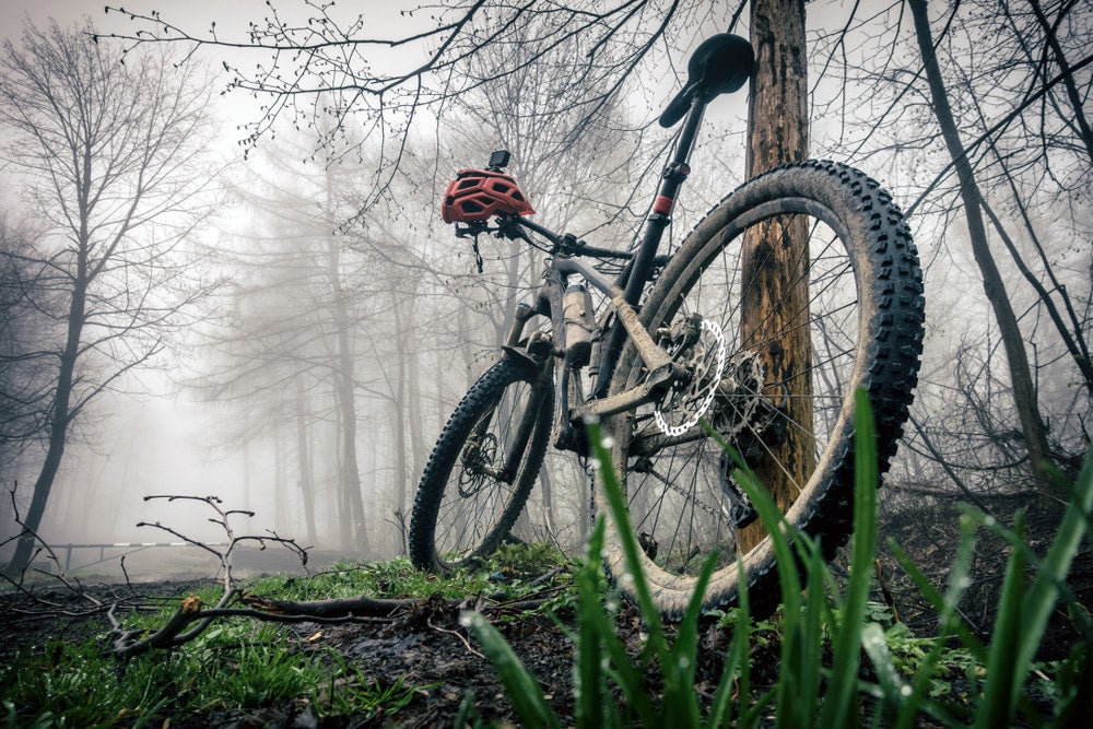 a mountain bike leaning against a tree in a foggy forest