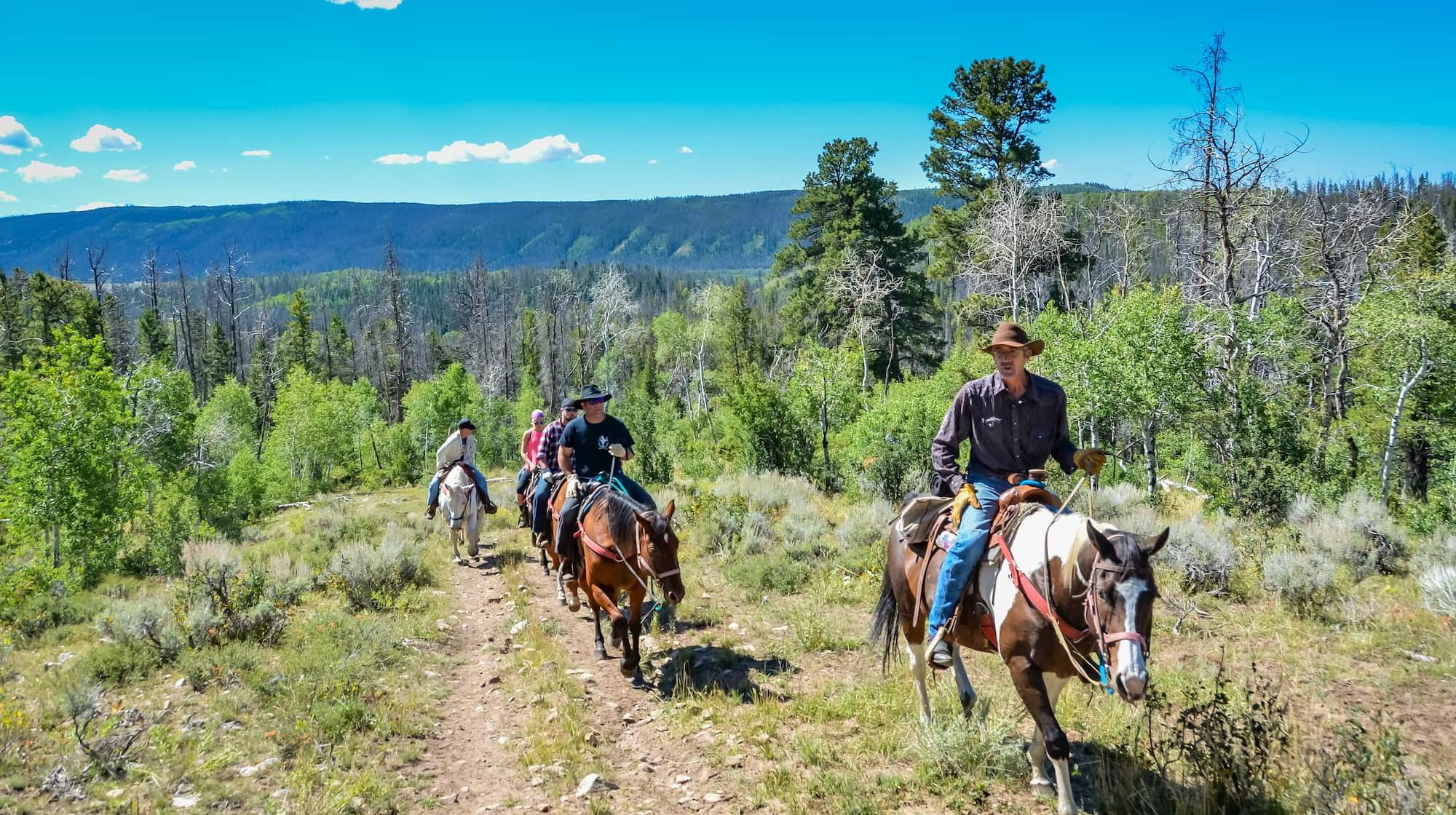 16 Dude Ranch Vacations That Let You Live Your Wild Western