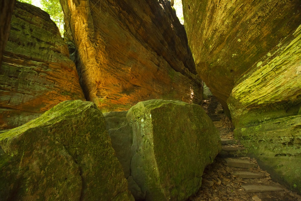 Natural rock stairway through moss covered boulders in at the Cantwell Cliffs.