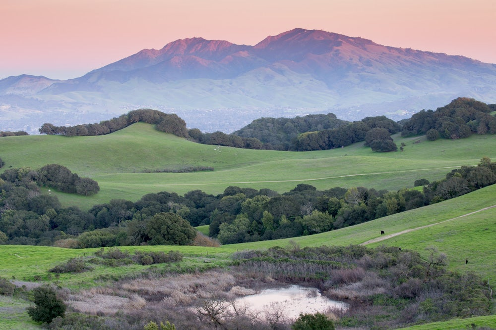 Photo of Mt. Diablo at sunset with green grassy hills in foreground
