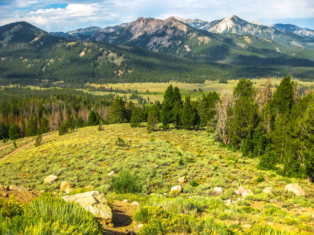 Panoramic view of tree-lined foothills at the base of mountain range in Sawtooth National Forest, Utah.