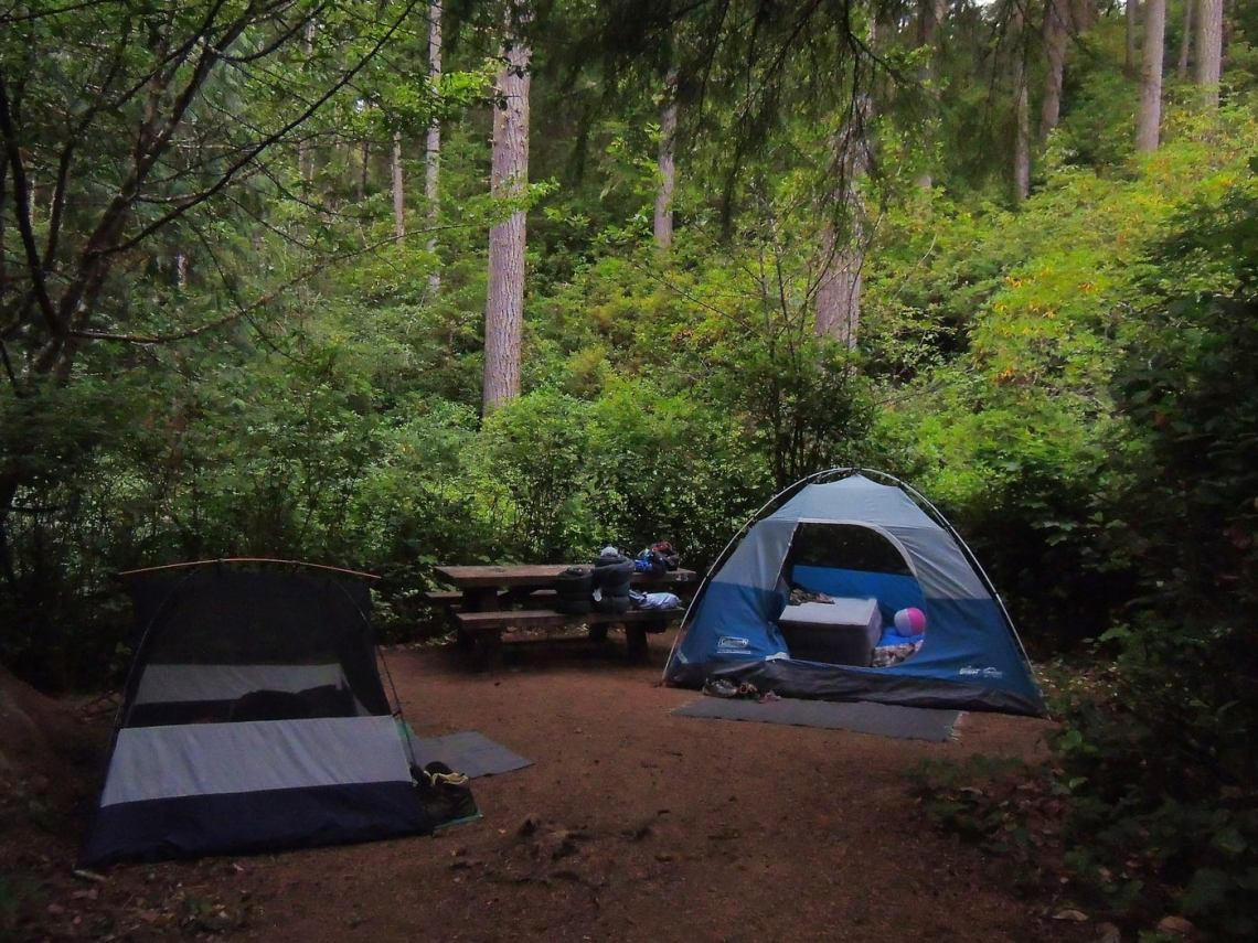 Two blue tents set up in a shady forest clearing.