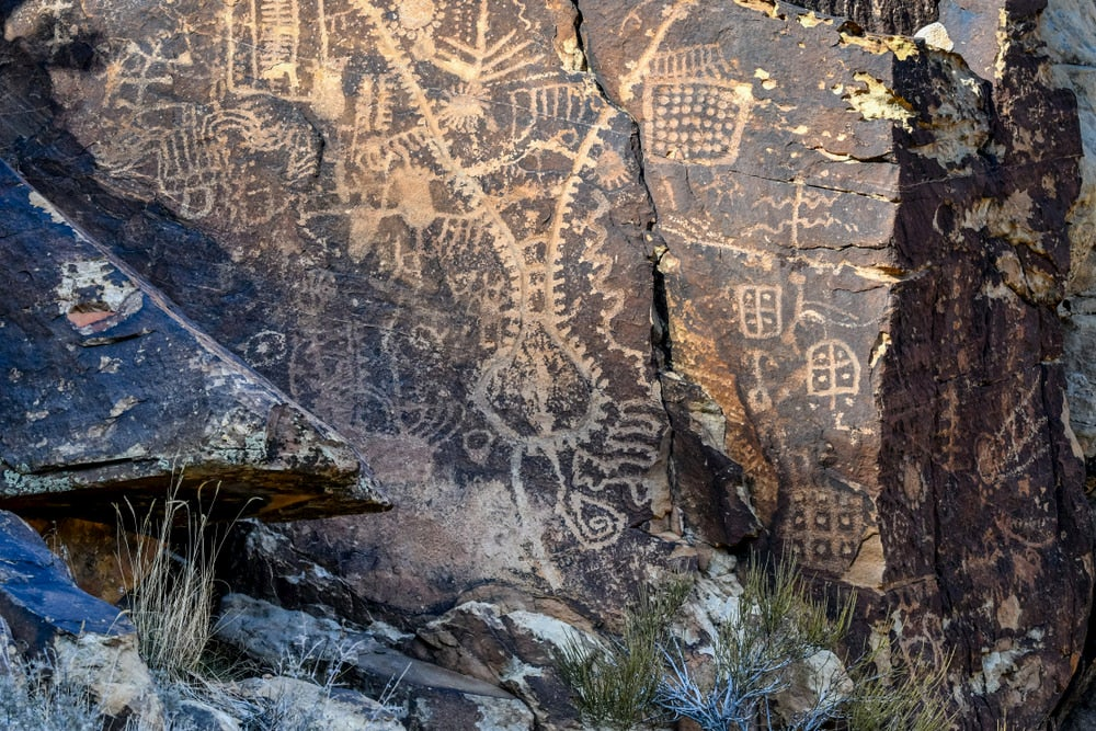 White petroglyphs in black rock and shrubbery in foreground