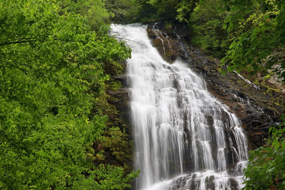 waterfall cascading over rocks surrounded by lush greenery