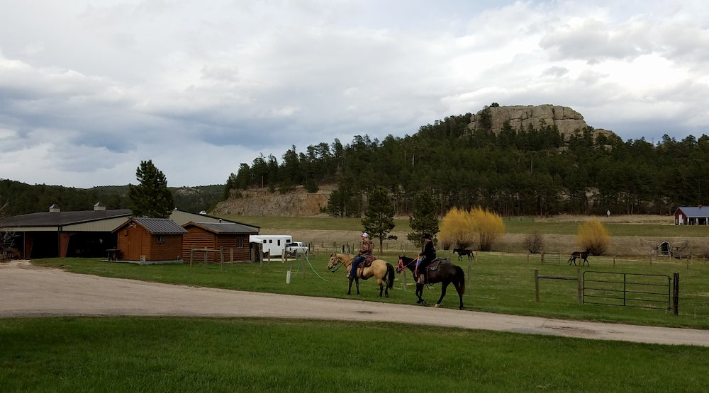 Two horses on a ranch with cabins in background