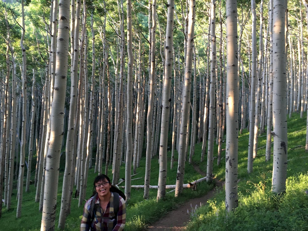 A person hiking through aspen trees