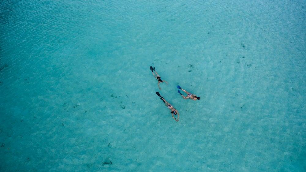 Three people snorkeling