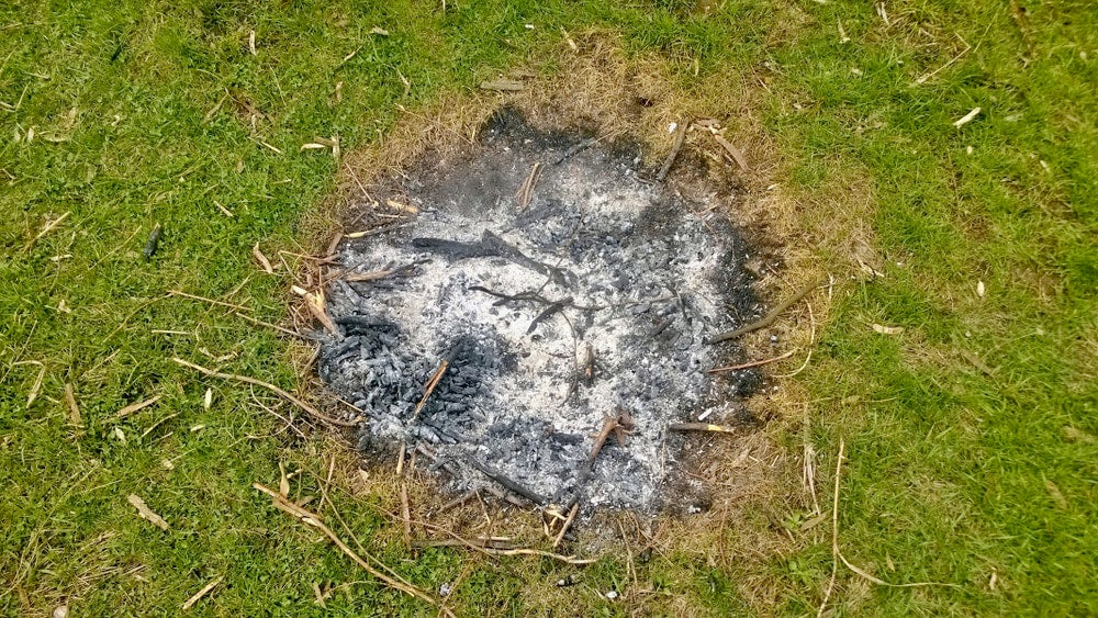 Campfire remnants in a field.