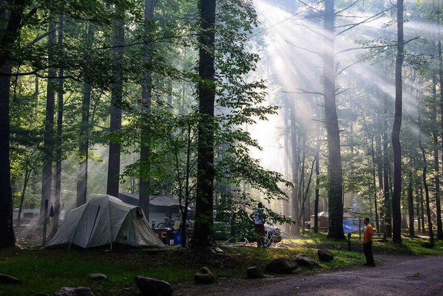 rays of light shine down over tent campsites in Tennesee's Elkmont campground, photo from a camper on The Dyrt