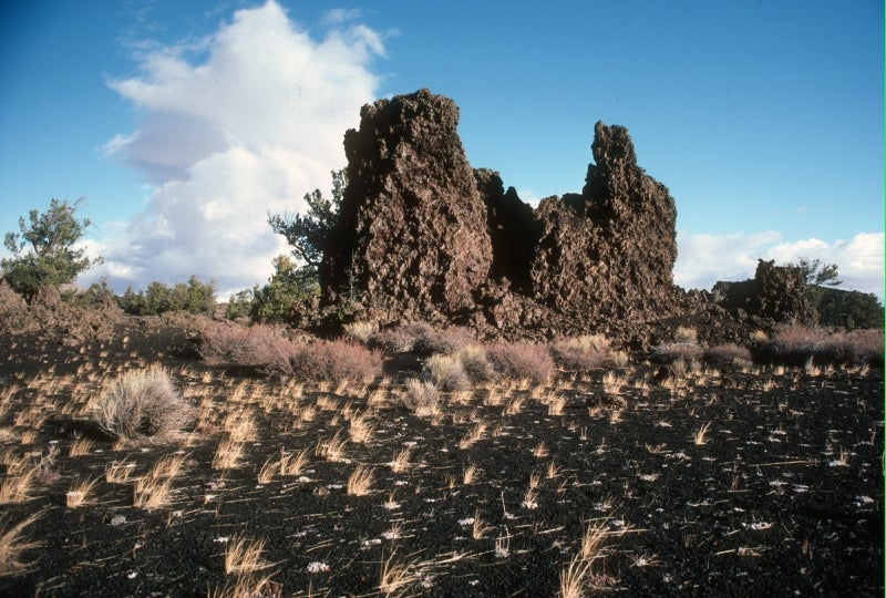 Volcanic rock walls jutting out of the earth in the Devils Orchard.