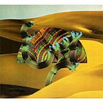 145px-Django_Django_Album_Cover