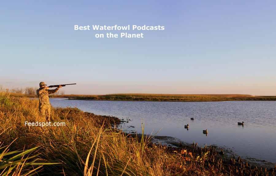Waterfowl Podcasts
