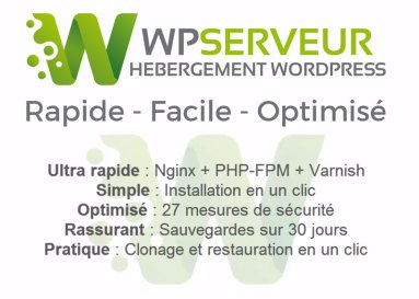 Wp Serveur Hebergement wordpress Web