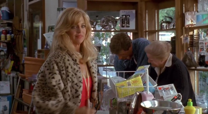 Housesitter Goldie Hawn Review