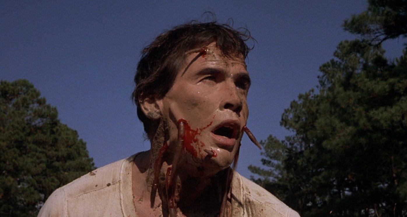 SQUIRM (1976)