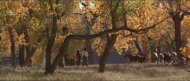 Der mit dem Wolf tanzt (1990)