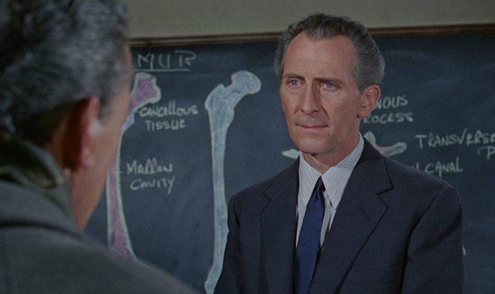 Insel des Schreckens (1966) – Filmkritik