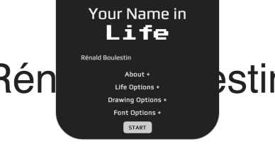 Your Name In Life