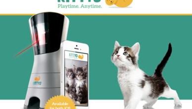 Kittyo vous permet d'interagir avec votre chat à distance